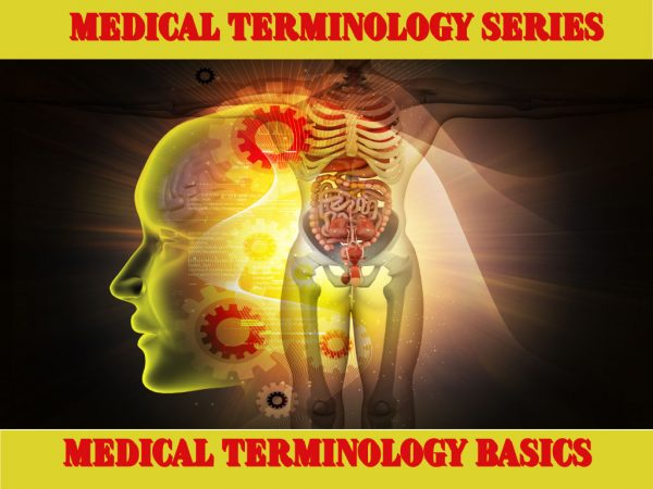 Medical Terminology Series/Medical Terminology Basics