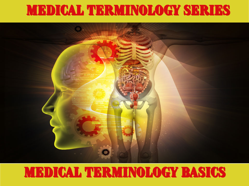 Medical Terminology Basics For Nursing Students Nursecepts