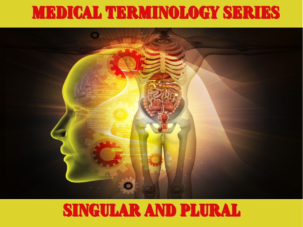 Medical Terminology: Singular and Plural