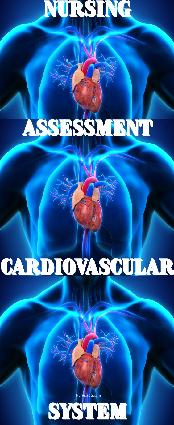 Nursing Assessment of the Cardiovascular System