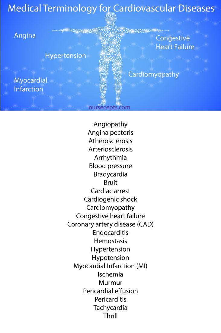 Medical Terminology Cardiovascular System Cardiovascular Diseases