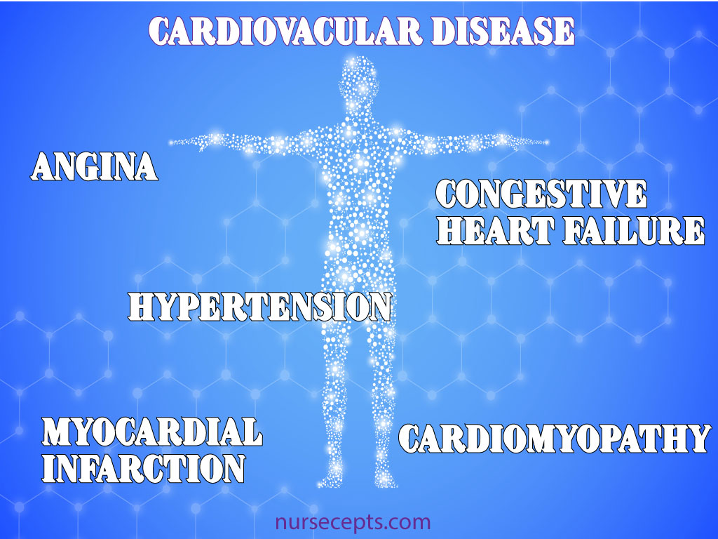 Medical Terminology of the Cardiovascular System Diseases
