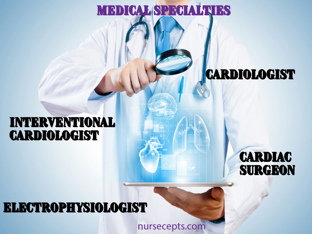 Medical Terminology of the Cardiovascular System Medical Specialist