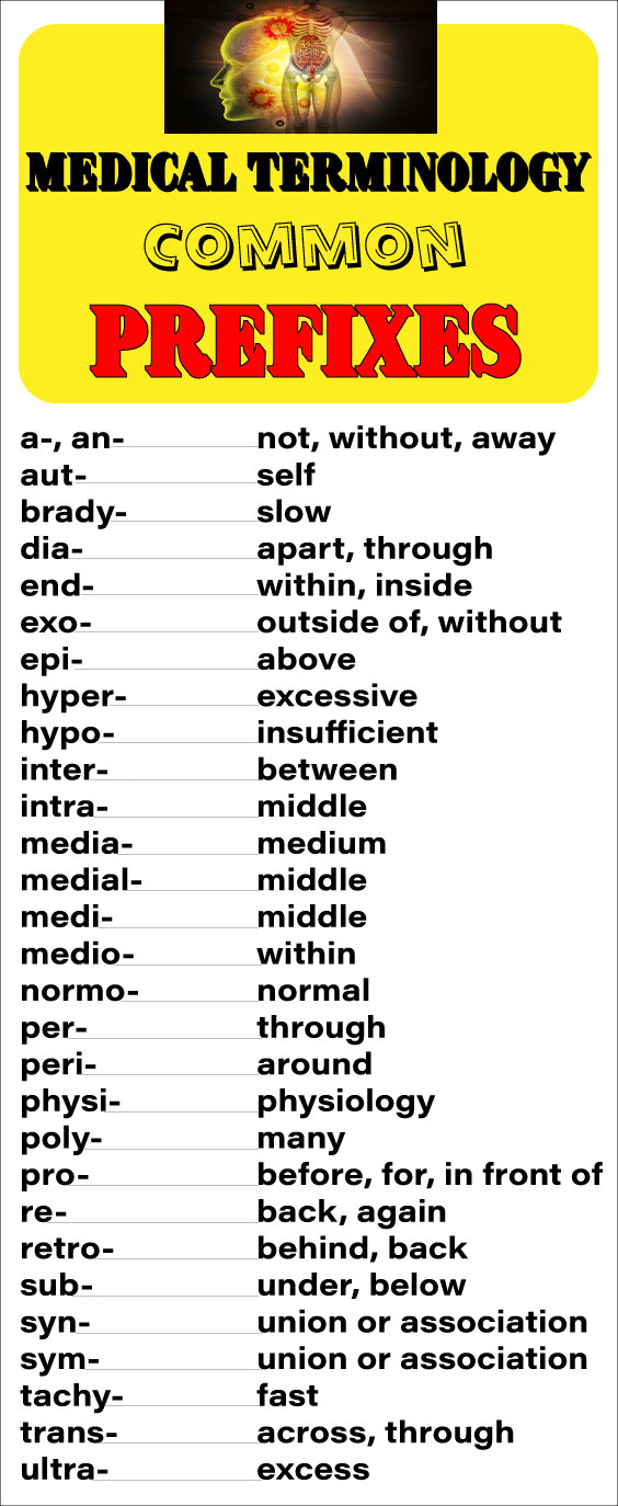 Medical Terminology Prefixes