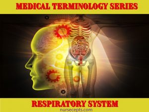 Medical Terminology of the Respiratory System