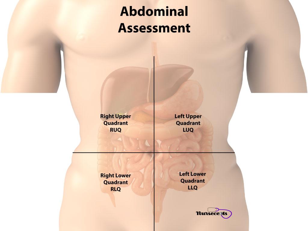 Gastrointestinal Assessment_Abdominal Assessment