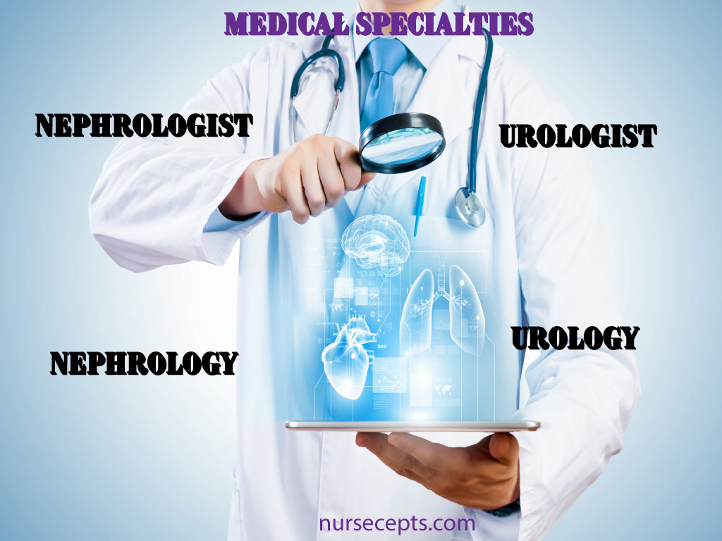 Medical-Terminology-Urinary-System-Specialist