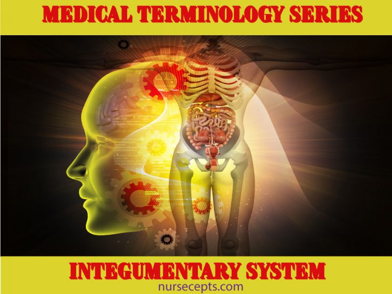 Medical-Terminology of the Integumentary-System_Feature