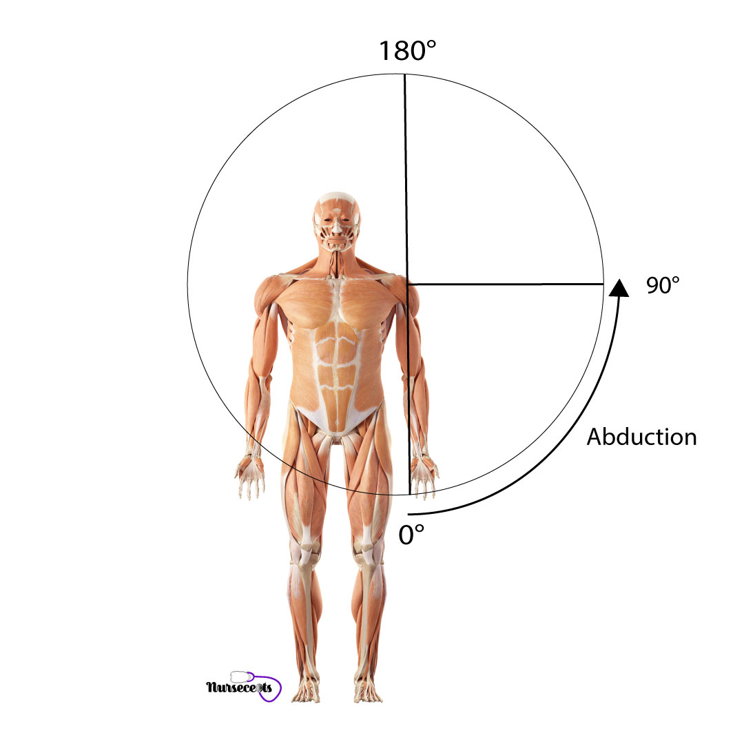 Assessment-of-the-Musculoskeletal-System_Abduction