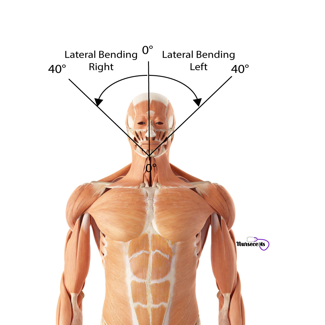Assessment-of-the-Musculoskeletal-System_Cervical-Spine-Lateral-Bending