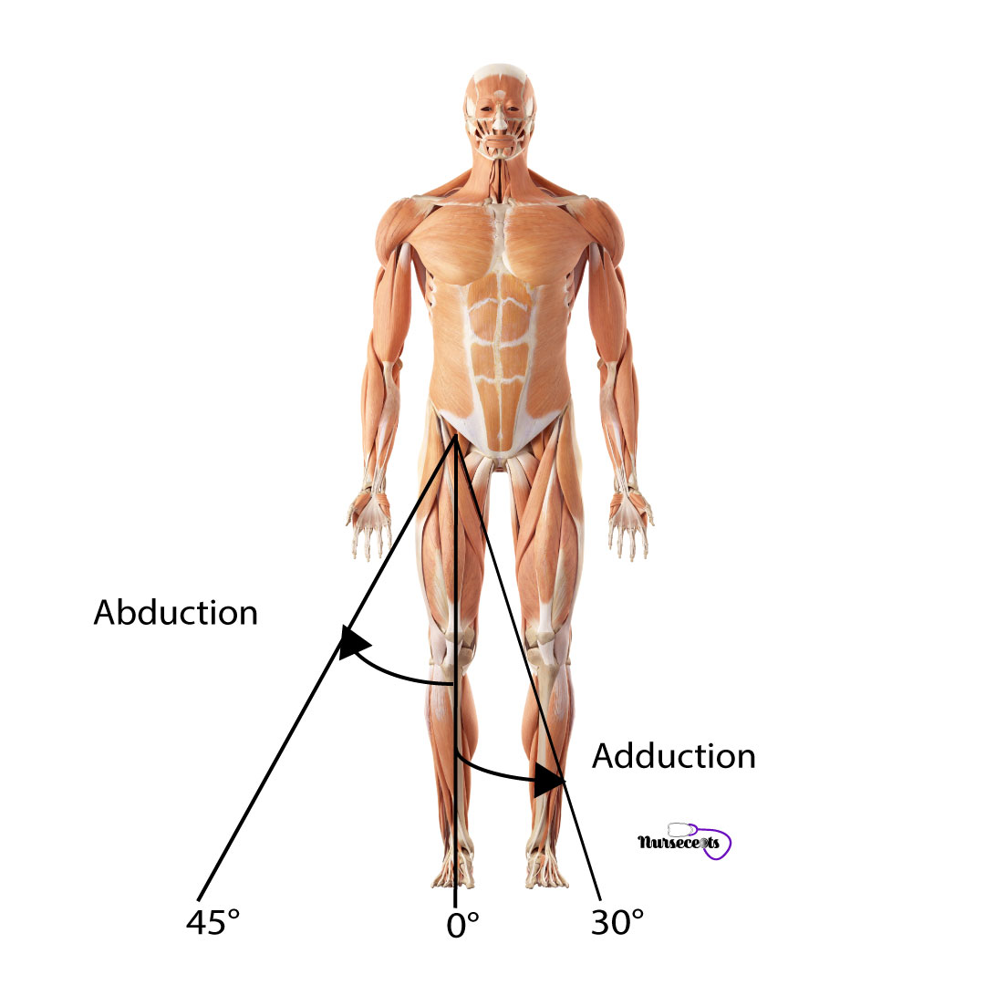 Assessment-of-the-Musculoskeletal-System_Hip-Abduction-Adduction