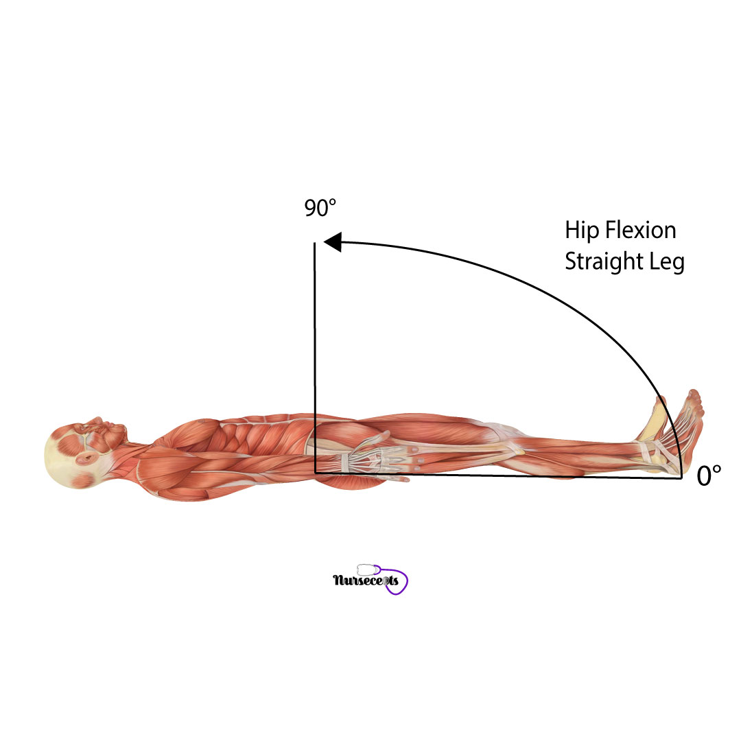 Assessment-of-the-Musculoskeletal-System_Hip-Flexion