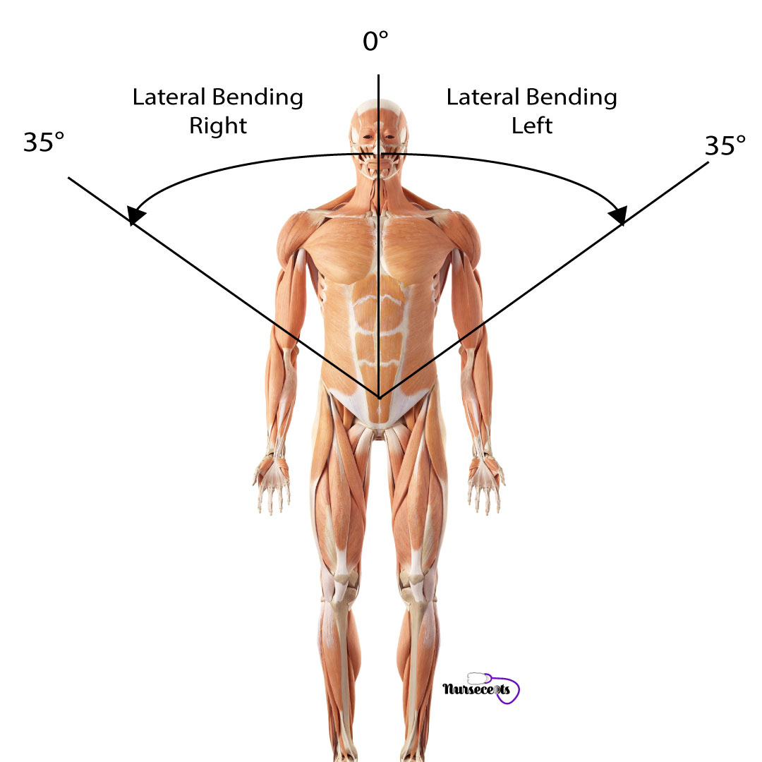 Assessment-of-the-Musculoskeletal-System_Spine-Lateral-Bending