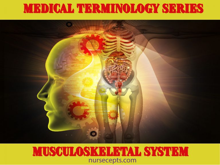 Medical-Terminology-MS-System_Feature