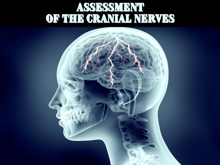 Assessment of Cranial Nerve Feature